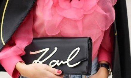 Една от чантите на Karl Lagerfeld се превърна в истинска сензация в Instagram