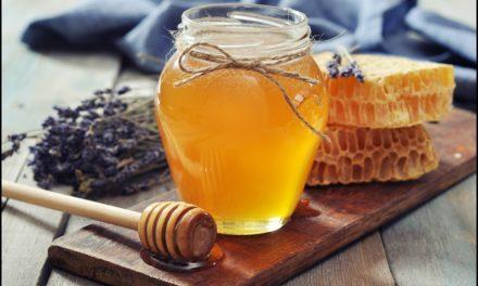 Полезните свойства на меда
