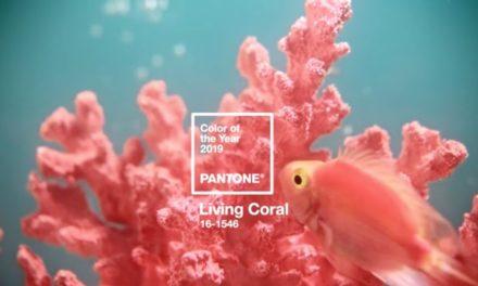 """""""Living coral"""" е цветът на 2019 г."""